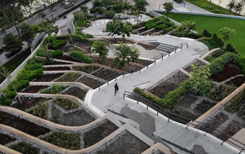 n aerial photo taken on Feb 7, 2020, shows architect Kotchakorn Voraakhom walking on the Thammasat Urban Farming Green Roof at Thammasat University in Pathum Thani, Thailand. Image: AFP