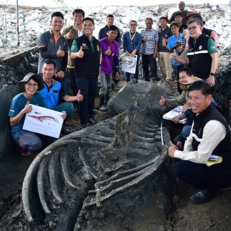 The skeleton was found miles off coastline, source: facebook.com/topvarawut